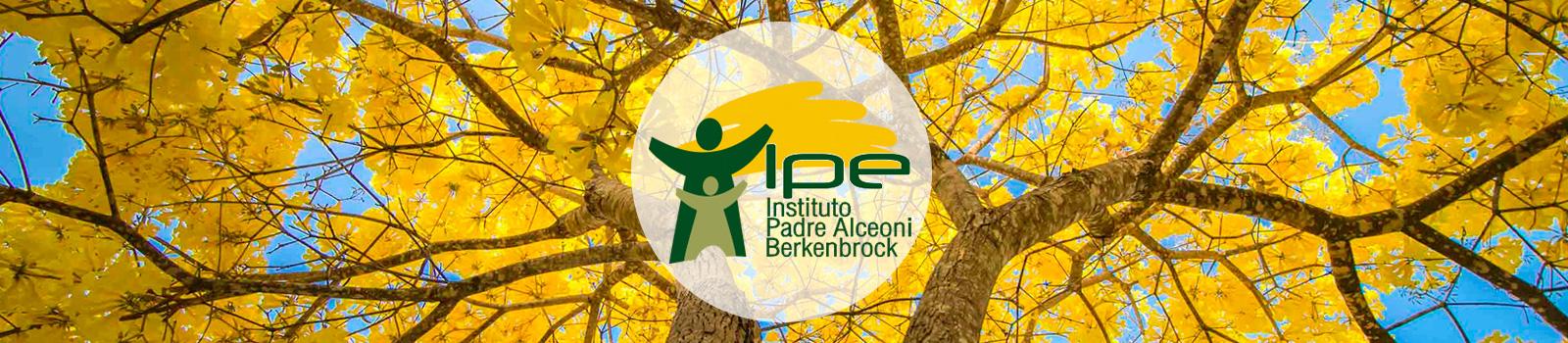 Instituto IPE